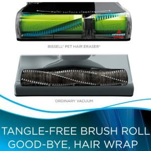 BISSELL Pet Hair Eraser Deluxe 16501 Review - Brushroll